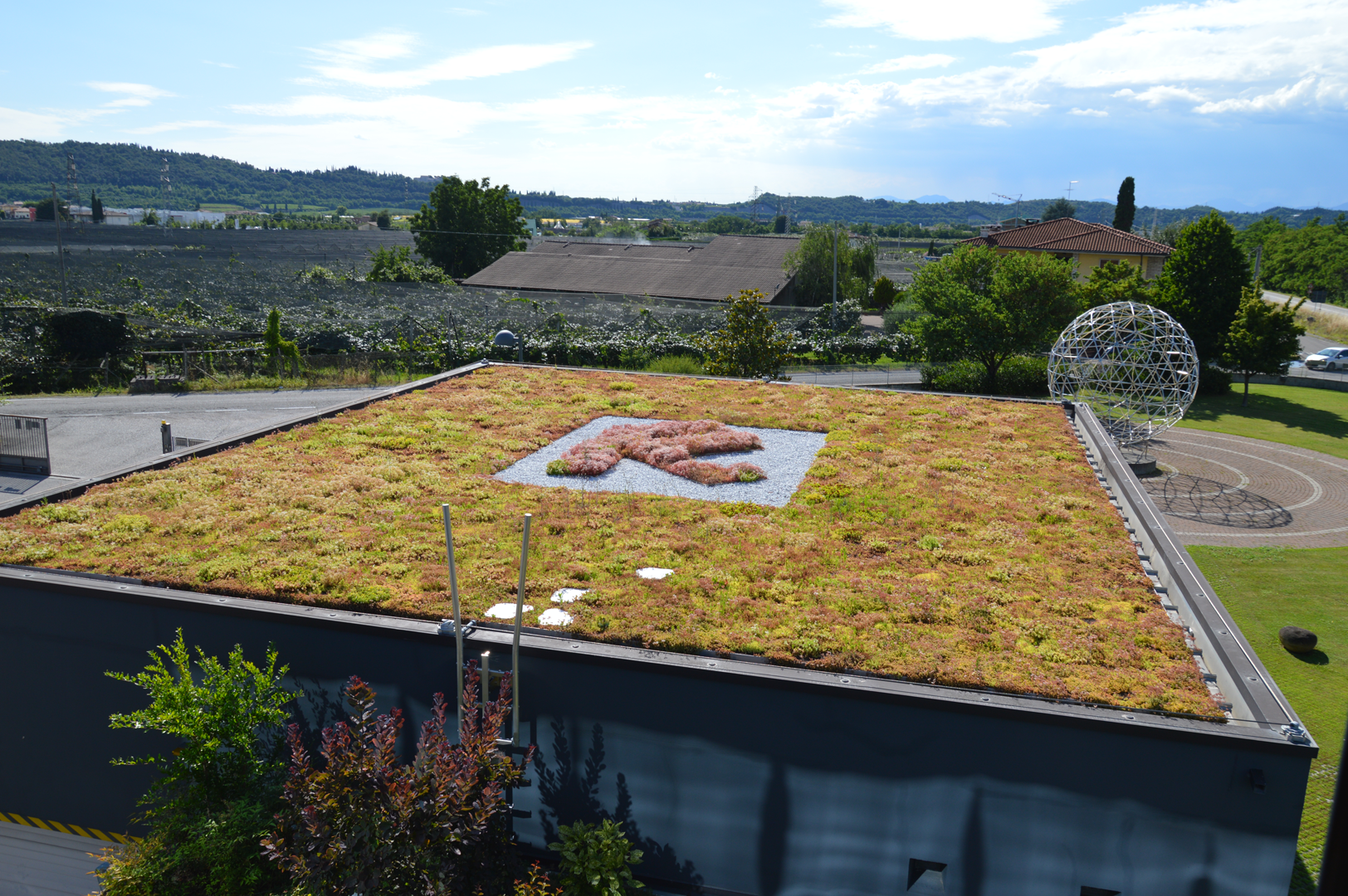 Riverclack green roof 1